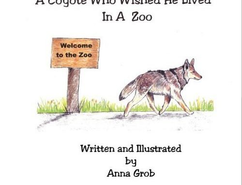 Anna Grob – A Coyote Who Wished He Lived in a Zoo